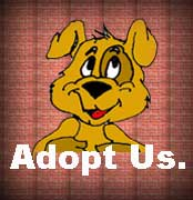 Scroll down to view our catalog of puppies that need homes.